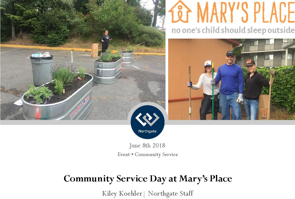 Northgate office cleaning & gardening at Mary's Place